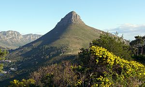 Lion's Head (Cape Town) - Lion's Head viewed from Signal Hill