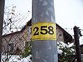 Lomnice nad Popelkou, lampa 258.jpg