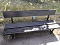 Long shot of the bench (OpenBenches 7406).jpg