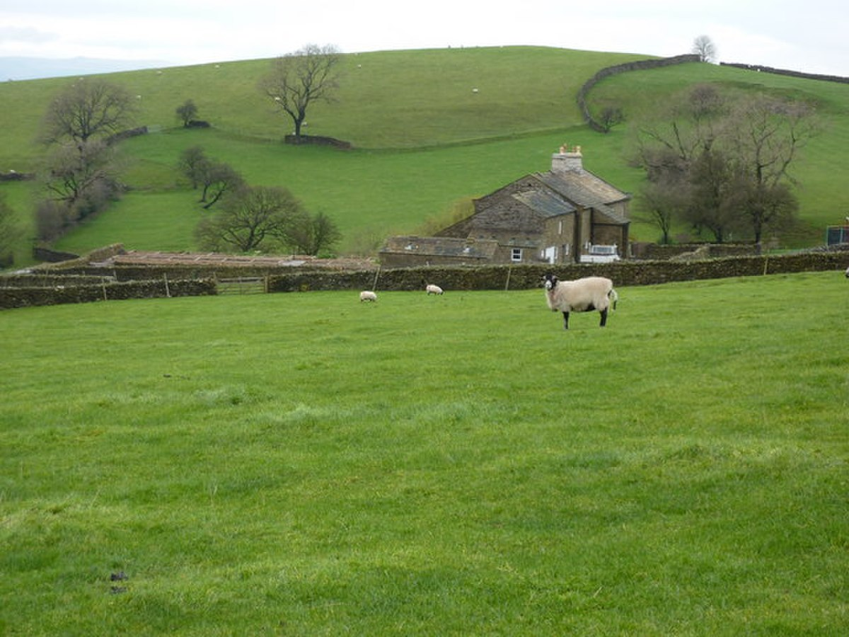 Looking north to Hollin's Farm - geograph.org.uk - 1580735.jpg
