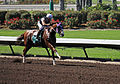 Los Alamitos Sept 2014 IMG 6802 (15131212068).jpg