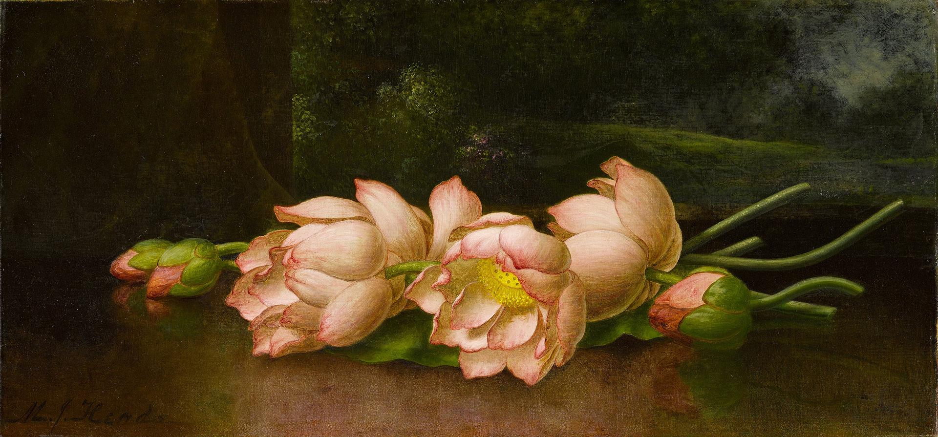 Цветы лотоса - Пейзажная картина на заднем плане - Мартин Джонсон Хид - Google Cultural Institute.jpg