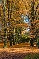 Münster, Park Sentmaring -- 2015 -- 9925.jpg