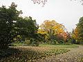 MSU 2014 Botanical Garden O.jpg