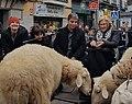Madrid, ciudad amiga de los animales, celebra San Antón 01.jpg
