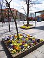 Madrid - Villa de Vallecas 03.jpg