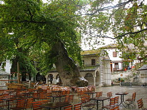 Makrinitsa - Makrinitsa square