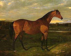 Manuella - Manuella by John Frederick Herring, Sr. (1795–1865)