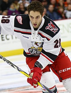 Matt Lorito Canadian professional ice hockey winger (1990-)