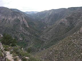 A photo looking up South McKittrick Canyon from above along the McKittrick Canyon Trail