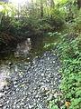 McSorley Creek - Saltwater State Park 2.jpg