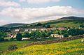 Meadowland at Fremington - geograph.org.uk - 318960.jpg
