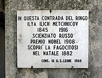 Memorial Plaque for the discovery of Phagocytosis by Ilya Ilyich Mechnikov in 1882 at Messina (Italy).jpg