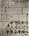 Metropolitan Museum of Art. Mural from the Tomb of Perneb (3678909284).jpg