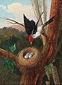 Michelangelo Meucci Vogel bei seinem Nest.jpg