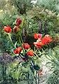 Mildred Anne Butler - Garden Poppies (14851152764).jpg