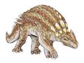 Minmi paravertebra dinosauria.png