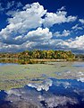 Minsi Lake (1) (10090313814).jpg