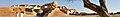 Mohenjo-daro WV banner.jpg