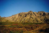 Monte Cinto.jpg