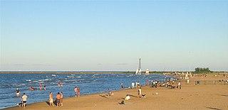 Montrose Avenue Beach