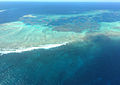Morning Reef, Abrolhos Islands, WA.jpg