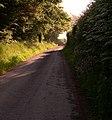Morning drive - geograph.org.uk - 1357080.jpg
