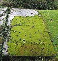 Moss-covered grave, St. Mary's, Newent. - geograph.org.uk - 526488.jpg