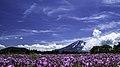 Mt Fuji At Lake Kawaguchi (109762227).jpeg