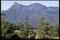 Mt Warning from Tyalgum-3and (4587999476).jpg