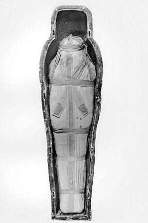 Isetemkheb D - Mummy of Isetemkheb D found in DB320