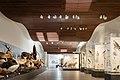 Musee Crozatier Galerie sciences.jpg