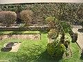 My garden - panoramio.jpg