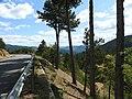N106 Col de Montmirat 6313.JPG