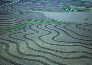Umbrisol - Contour terraces and grassed waterways used for erosion control in Kansas.