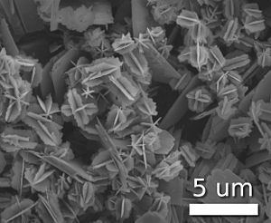 Nanoparticle - Nanostars of vanadium(IV) oxide