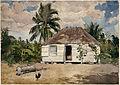 Native Huts, Nassau, by Winslow Homer, 1885.jpg
