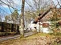 Naturtheater Renningen - panoramio (1).jpg