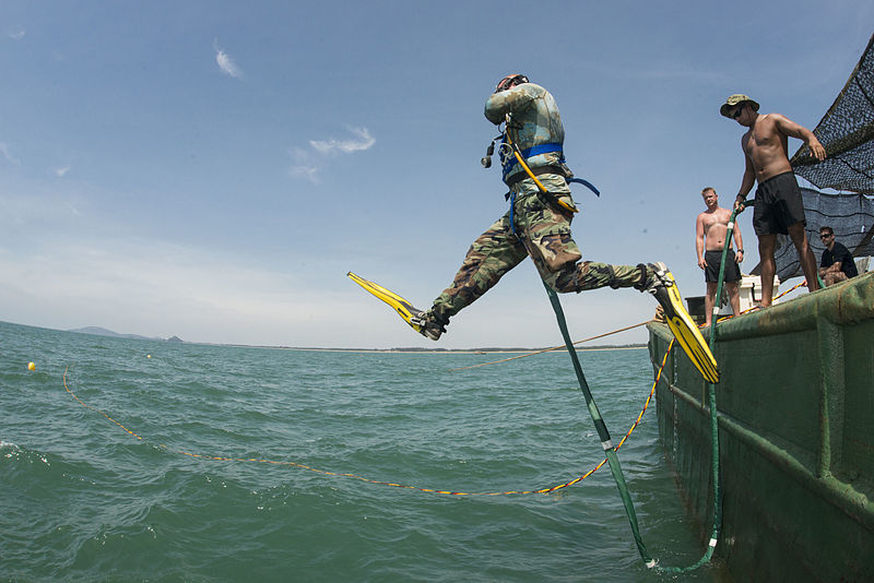 File:Navy diver enters water during POW-MIA recovery mission 150527-N-IP743-011.jpg