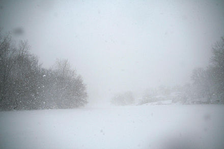 Conditions approaching a blizzard whiteout in Minnesota, on March 1, 2007. Note the unclear horizon near the center. Nearwhiteoutinminnesota.JPG