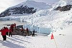 Neko Harbour Antarctica 7 (32395010207).jpg