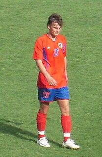 Nemanja Bilbija Bosnian footballer