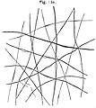 Nerve fibres, from Rudolf Albert von Koelliker Wellcome L0002008.jpg