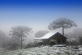 Neve Caxias do Sul (3)