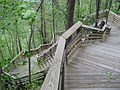 New River Gorge Bridge walkway.jpg