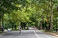 New York City (New York, USA), Central Park -- 2012 -- 6725.jpg