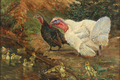 Niels Pedersen Mols - Kalkuner med kyllinger ved dammen - 1909.png