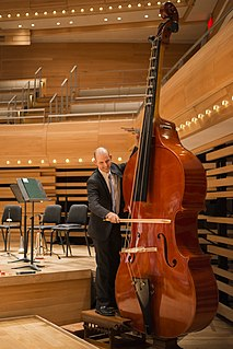 Octobass large and rare string instrument