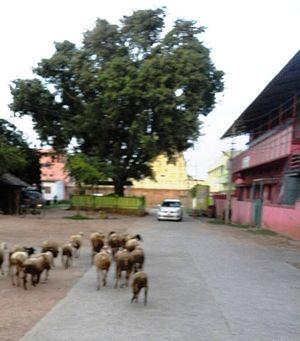 Nagamangala - Old Post Office Road, Nagamangala
