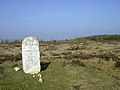 Old milestone on heathland between Clay Hill and Wilverley Post, New Forest - geograph.org.uk - 24970.jpg